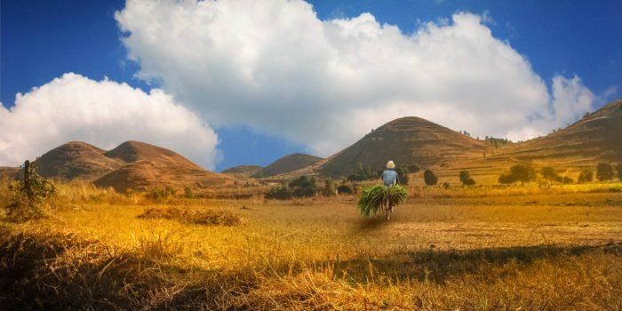 Madagaskar a příroda